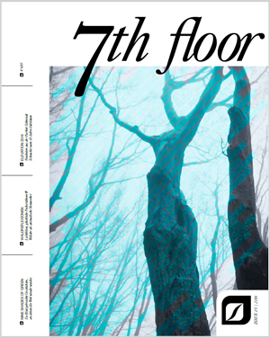 7th Floor Ausgabe 5
